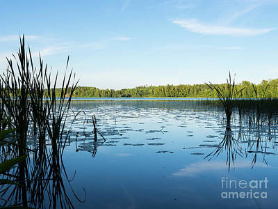 Photograph - View Of The Lake Enajarvi by Ismo Raisanen