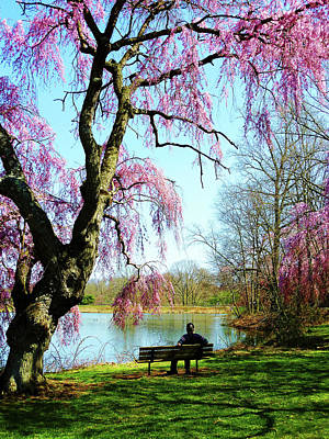 Photograph - View Of The Lake In Spring by Susan Savad