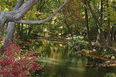 Photograph - View Of The Mill River by Margie Avellino