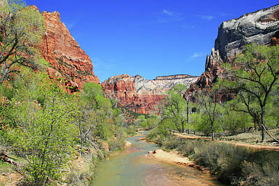 Photograph - View Of The Virgin River 1 by Ellen Henneke