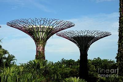 Photograph - View Of Two Artificial Supertrees At Gardens By The Bay Singapore by Imran Ahmed