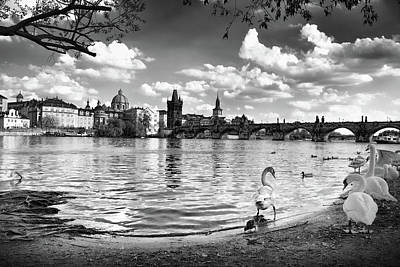Photograph - View Op Vltava River In Prague by Mihaela Pater