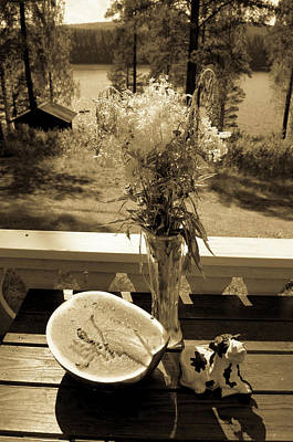 Photograph - View Outside Summer House by Tamara Sushko