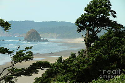Photograph - View Over Cannon Beach  by Christiane Schulze Art And Photography