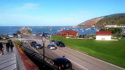 Photograph - View Over Friendly Bay by Nareeta Martin