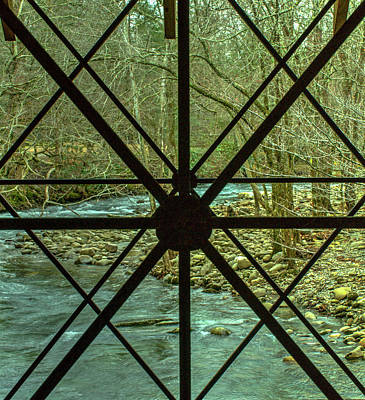 Photograph - View Through Transect Window by Douglas Barnett