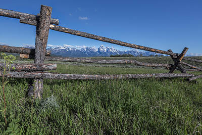 Photograph - View Thru The Fence by Jon Glaser