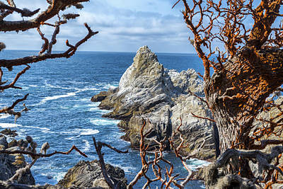 Point Lobos Photograph - View To A Rock by Joseph S Giacalone