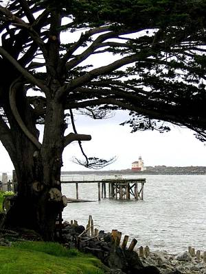 Photograph - View To Coquille Lighthouse by Will Borden