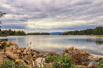 Photograph - View To Mount Desert Island by Elizabeth Dow