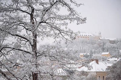 View To Spilberg Castle In Brno Art Print by Jenny Rainbow