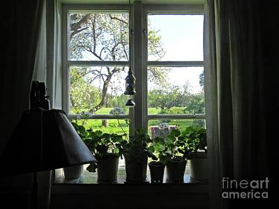 Photograph - View To The Garden by Chani Demuijlder