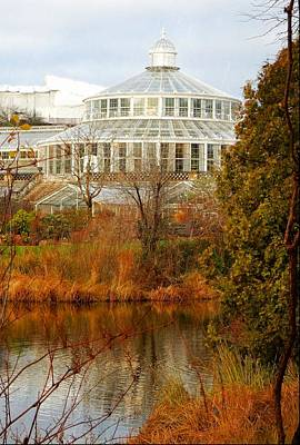Photograph - View To The Palm House Copenhagen by Dorothy Berry-Lound