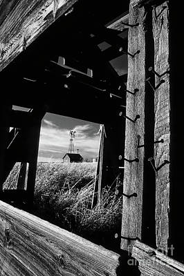 Photograph - View To The Past Monochrome by Bob Christopher