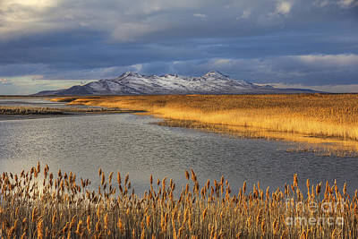 Photograph - View Towards Antelope Island by Spencer Baugh