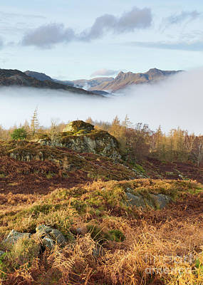 Langdale Pikes Photograph - View Towards The Langdales From Holme Fell by Tony Higginson