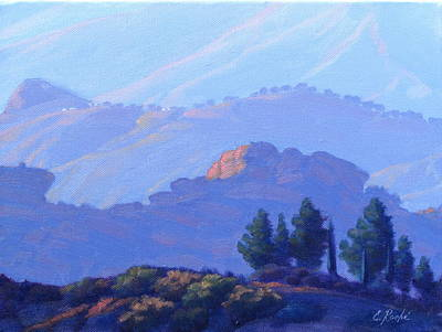 Plein Air Painting - Viewridge Late Afternoon by Elena Roche