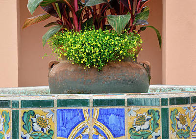 Photograph - Villa Marianna Flower Pot by Bruce Gourley