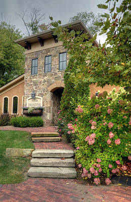 Photograph - Villa Trentino With Hydrangea by Ann Bridges