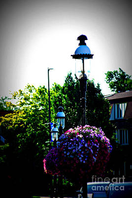 Photograph - Village Hall Flowers by Frank J Casella