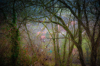 Photograph - Village In The Forest by Bill Howard