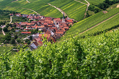 Photograph - Village In The Vineyard by Framing Places