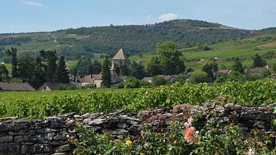 Photograph - Village With Stone Wall by Cheryl Miller