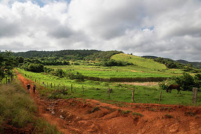 Photograph - Vinales Valley by Yuri Santin