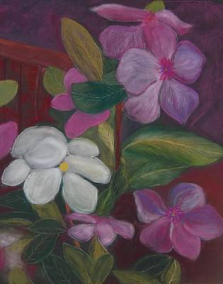 Pastel - Vinca Major by Calliope Thomas