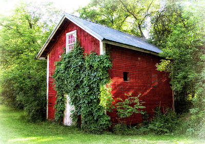 Photograph - Vine Covered Shed by Carolyn Derstine