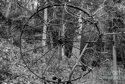 Photograph - Vine Covered Wheel Grayscale by Jennifer White