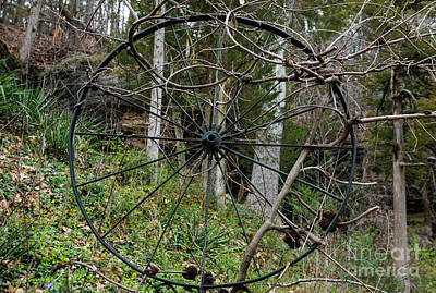 Photograph - Vine Covered Wheel by Jennifer White