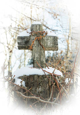 Photograph - Vine Entangled Cross by Douglas Barnett