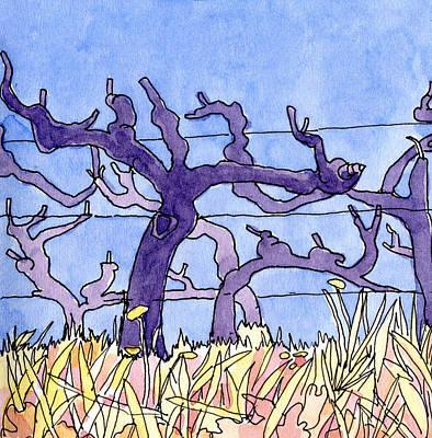 Provence Drawing - Vine Patterns At Gigondas  by Elizabetha Fox