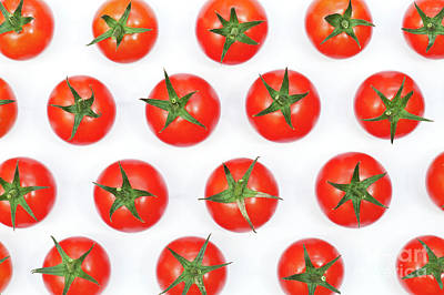 Photograph - Vine Tomatoes by Tim Gainey