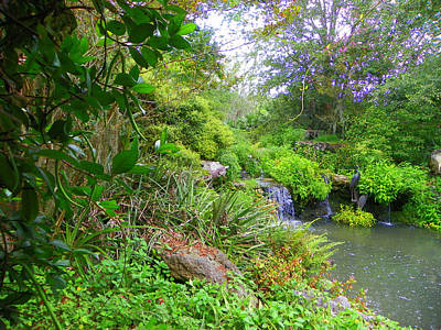 Photograph - Vine View Waterfall Garden by Sheri McLeroy