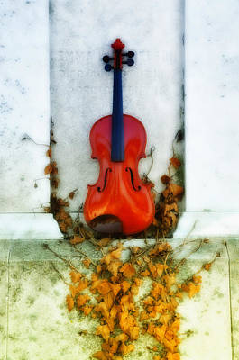 Vines And Violin Art Print by Bill Cannon