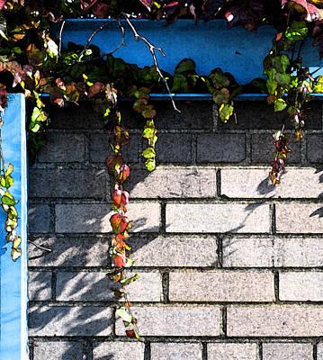 Vines On Blue Art Print by Gary Everson