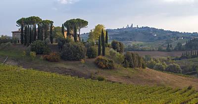 Vineyard And Farm, San Gimignano Art Print by Petr Svarc