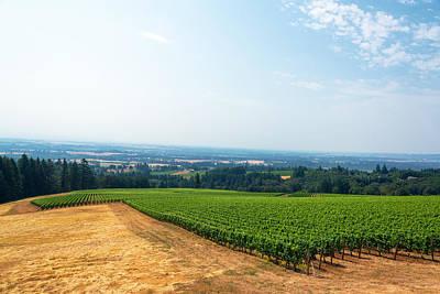Pinot Noir Photograph - Vineyard And Willamette Valley by Jess Kraft