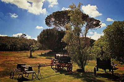 Wine Cart Photograph - Vineyard by Benjamin Matthijs