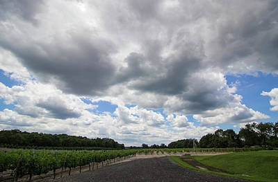 Vineyard Clouds Art Print
