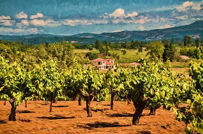 Vineyard Estate Art Print by John K Woodruff