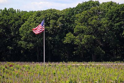 Winery Photograph - Vineyard Flag by Brian Manfra