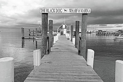 Photograph - Vineyard Haven Black Dog Wharf Marina Martha's Vineyard Cape Cod Black And White by Toby McGuire