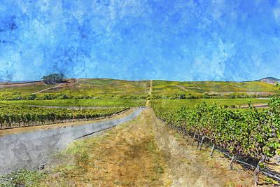 Vineyard In Napa Valley California Art Print