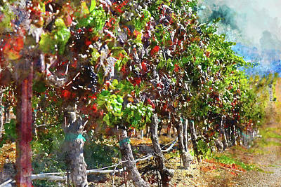 Winery Digital Art - Vineyard In Napa Valley California During The Fall by Brandon Bourdages
