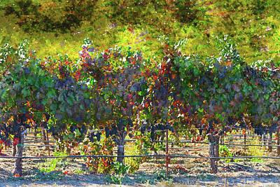 Winery Digital Art - Vineyard In Napa Valley California In Autumn by Brandon Bourdages