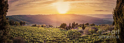Vineyard Landscape Panorama In Tuscany, Italy. Wine Farm At Sunset Art Print by Michal Bednarek