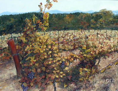 Painting - Vineyard Lucchesi by Randy Sprout